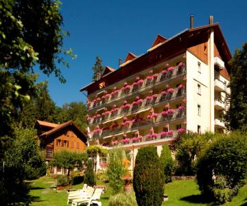 Hotel Wengener Hof Wengen